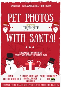 creekside-pet-photos-page-001